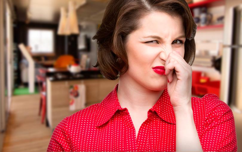 Aprenda Tudo Sobre o Cheiro do Gás LP de Cozinha
